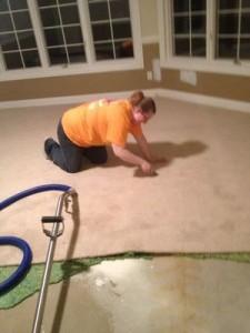 Water Damage Restoration Expert Checking Over Her Work