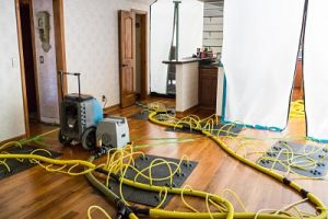 Water Damage And Mold Decontamination In A Residential Property