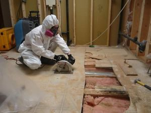 Mold Removal Technician At Work Removing Infested Floorboards